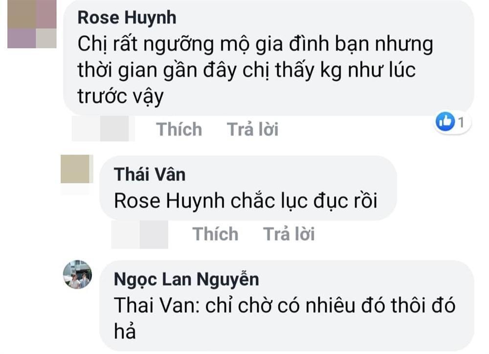 Ngọc Lan đáp trả gay gắt khi bị dân mạng chất vấn chuyện ly hôn Thanh Bình-3
