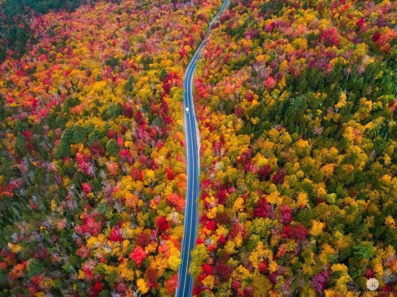 7 con đường mùa thu như chỉ có trong cổ tích-1