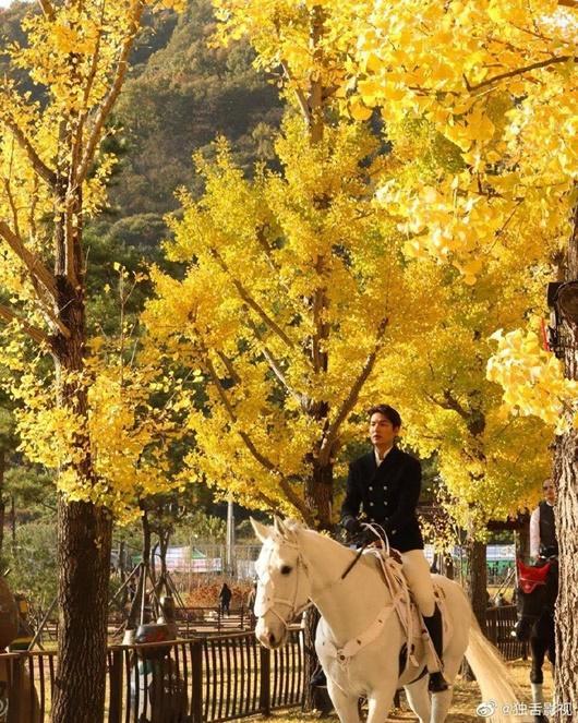 Lee Min Ho gây bão với tạo hình bạch mã hoàng tử trong phim mới-2