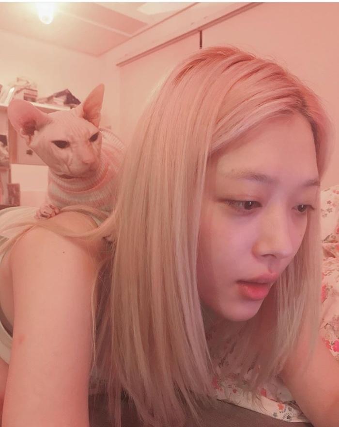 Sự thật về việc Yoo Ah In nuôi mèo cưng của Sulli-5