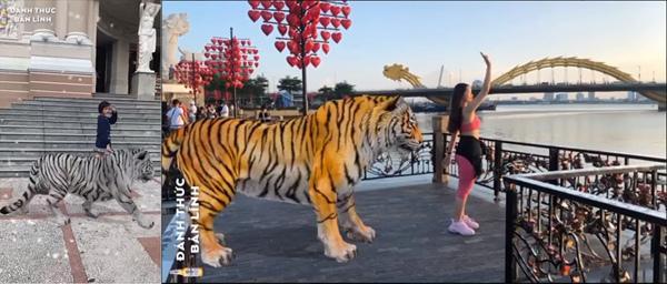 Trào lưu mới đổ bộ: Giới trẻ đua nhau làm sen cho hổ-1