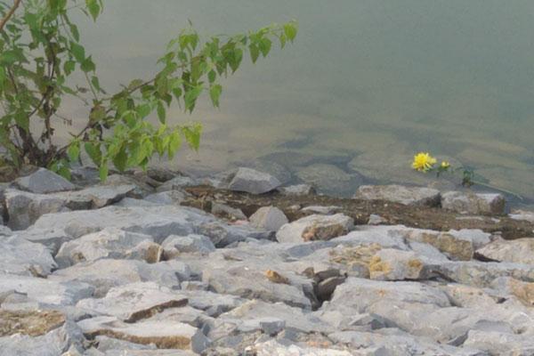 Vụ bà nội sát hại cháu ruột ở Nghệ An: Nghi phạm mang hoa cúng, lư hương, quả trứng ra hiện trường?-2