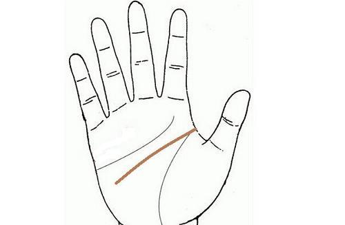 Muốn biết đàn ông có thật lòng chung thủy hay không, phụ nữ chỉ cần nhìn đường chỉ tay là rõ-3