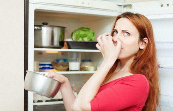Dấu hiệu cảnh báo tủ lạnh hết gas, phải thay ngay kẻo cả nhà gặp họa-2