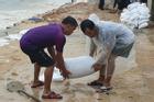 Bão số 6 áp sát Bình Định - Phú Yên - Khánh Hòa, bắt đầu mưa lớn