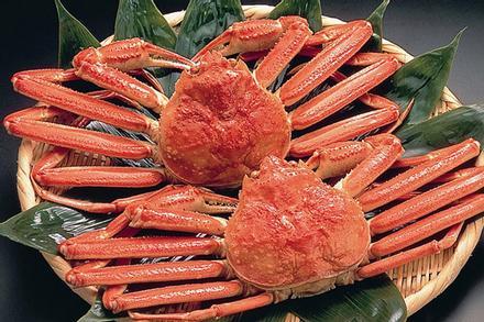 Đầu bếp Nhật trổ tài làm sashimi cua tuyết cỡ lớn