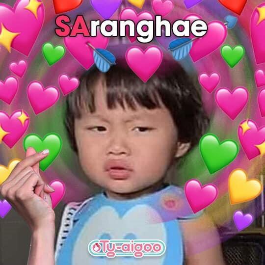 Vlogger Quỳnh Trần thông báo bé Sa sẽ ngừng xuất hiện trên Vlog-2