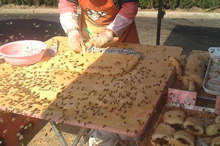 Video: Món bánh kỳ lạ được làm giữa hàng trăm con ong bu quanh