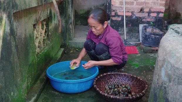 Sau Ẩm thực mẹ làm, bà Tân Vlog tiếp tục bị soi làm clip giống kênh nấu ăn nổi tiếng của Trung Quốc-4