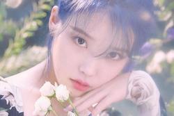 8 nghệ danh độc đáo của idol Kpop
