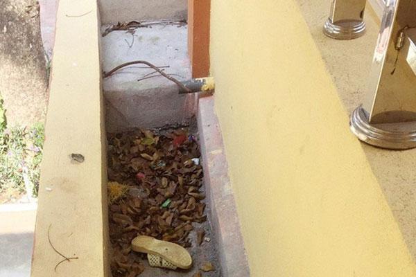 Bắc Giang: Một học sinh lớp 7 bị thương nặng do ngã từ tầng 2 xuống sân trường-1