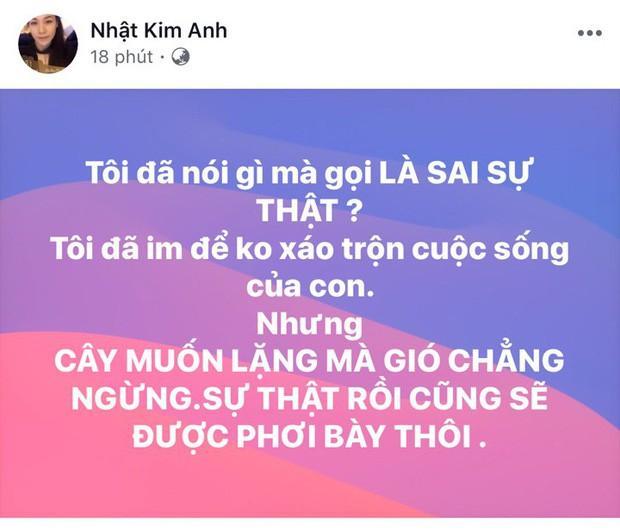 Chồng cũ phản hồi khi bị tố bạo hành Nhật Kim Anh-3
