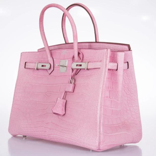 Ngọc Trinh lại lỡ phải lòng một chiếc túi Hermès giá trị bằng cả căn nhà-2