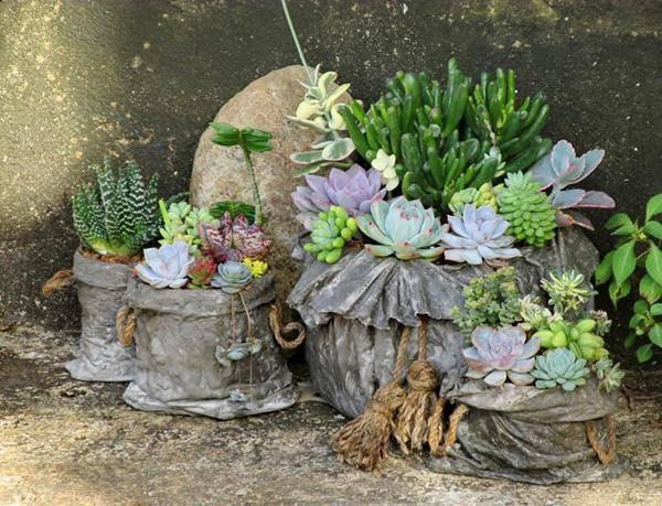 Tuổi Mùi hợp cây gì trồng trong nhà sẽ hút nhiều tài lộc, may mắn cho gia chủ?-2
