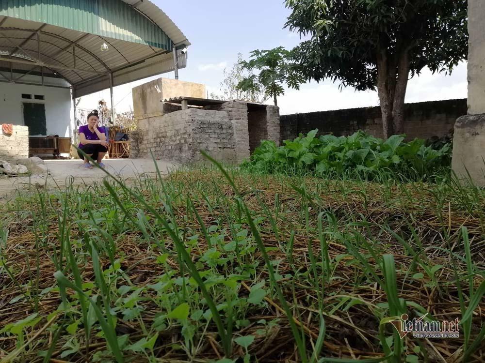Nước mắt của mẹ Vì Văn Toán sau phiên xử vụ nữ sinh giao gà-5