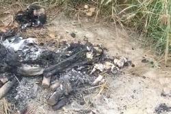 Bộ xương bị đốt cháy đen, còn sót lại hộp sọ trong đống tro tàn ở nghĩa địa Sài Gòn là xương người