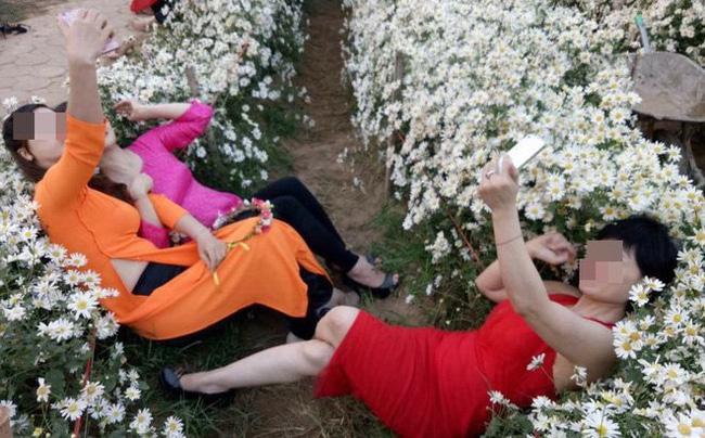 Cô gái nằm đè lên vườn cúc họa mi chụp ảnh, cư dân mạng ra sức ném đá nhưng lại phì cười khi khổ chủ vừa đứng lên-3