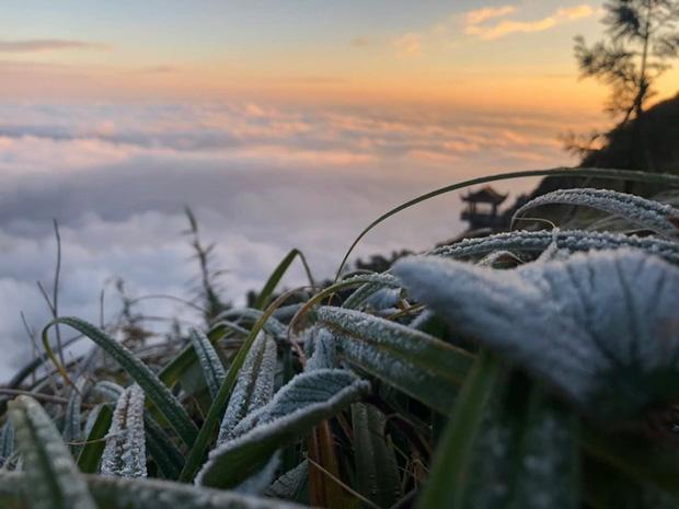 HOT: Xuất hiện băng giá phủ trắng đỉnh Fansipan, dân tình rục rịch rủ nhau cuối năm lên Sa Pa săn tuyết rơi-2
