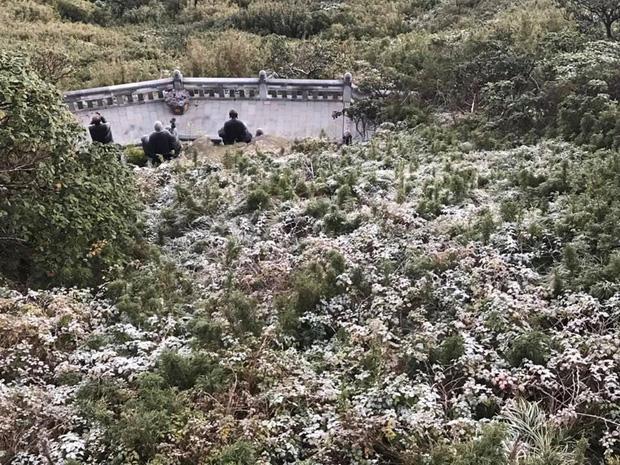 HOT: Xuất hiện băng giá phủ trắng đỉnh Fansipan, dân tình rục rịch rủ nhau cuối năm lên Sa Pa săn tuyết rơi-3