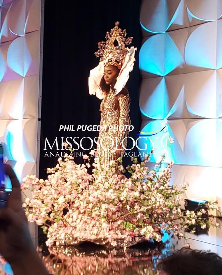 Top 10 quốc phục chất khỏi bàn chỉ có ở Miss Universe 2019: Hoàng Thùy trình diễn cafe phin xuất sắc-11