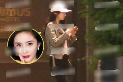 Dương Mịch và trai trẻ Ngụy Đại Huân bị phát hiện qua đêm ở cùng khách sạn