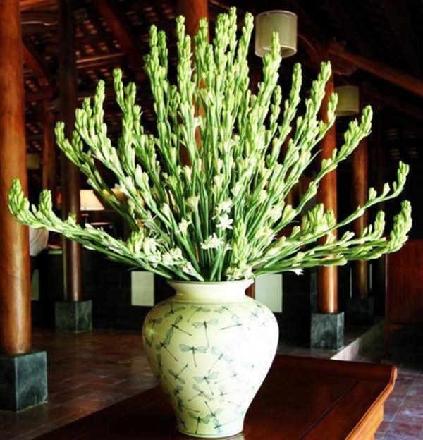 Cúng Rằm chọn đúng 5 loại hoa này, tiền tài tíu tít, buôn gì đắt nấy-4