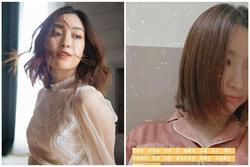 Đỗ Mỹ Linh mạnh tay cắt tóc ngắn thêm đến nỗi tóc chỉ còn 'một mẩu'