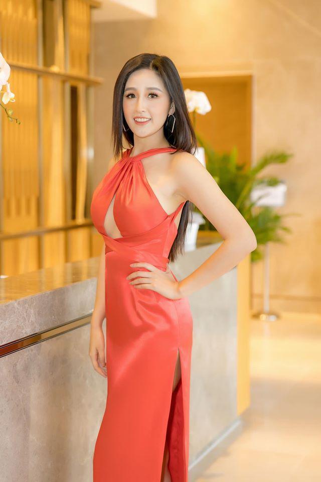 Mai Phương Thúy và những hoa hậu Việt hoạt động sôi nổi trong năm 2019-1