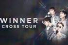 WINNER lần đầu tổ chức concert ở Việt Nam, fan 'mướt mồ hồi' săn vé đến sập cả web