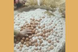 Cách làm món trứng vịt bắc thảo cổ truyền
