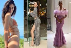 Bản tin Hoa hậu Hoàn vũ 26/12: Nguyễn Trần Khánh Vân so body S-line với dàn 'chị đại'
