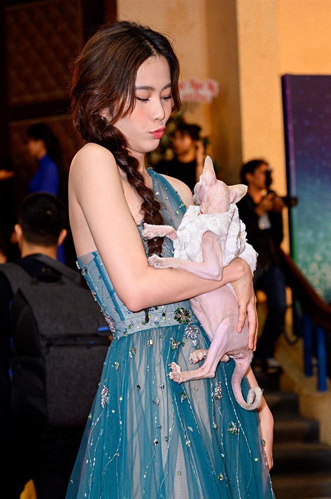 Chị em Nam Anh - Nam Em bế mèo không lông có giá bằng cả chiếc túi LV trên thảm đỏ Ngôi sao xanh-5