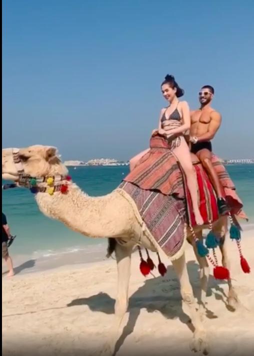 Mặc bikini nhỏ xíu cưỡi lạc đà, Ngọc Trinh khoe body 30 vẫn còn xuân trên đất Dubai sang chảnh-3