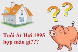 Sinh năm 1995 hợp màu gì khi xây nhà để có nhiều tài lộc, may mắn?