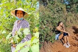Bản tin Hoa hậu Hoàn vũ 1/1: H'Hen Niê thay đổi 180 độ khi trở về cuộc sống buôn làng
