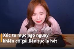 Cô gái Hàn Quốc la hét khi thưởng thức món mực nhảy múa