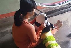 Cô gái thiểu năng bị 2 cha con dượng thay nhau hãm hiếp dẫn tới có thai