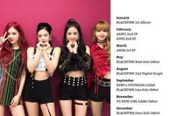 Fan mừng rơn khi truyền thông Hàn tung lịch trình dày đặc của BLACKPINK