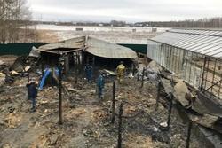 Thứ trưởng Nga: Những người thiệt mạng ở vụ cháy là công dân Việt Nam