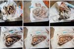 Tung tích 9 bộ xương người ở Tây Ninh: Vợ khai chồng mua để bán-3