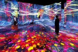 Triển lãm nghệ thuật cho du khách tương tác với thế giới ảo