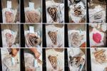 Vụ 9 bộ hài cốt ở Tây Ninh: Người chồng từng làm nghề bốc mộ, người vợ trách cháu sao phát hiện sọ người mà không báo với mình-3