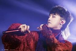 Khám phá sự thật thú vị về các Idol K-pop mà không phải ai cũng biết