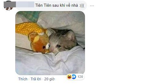Ai khóc nỗi đau này cho Tiên Tiên: Bị nhầm thành Tóc Tiên, hit tủ My Everything cũng bị chế... My Everywhere-5