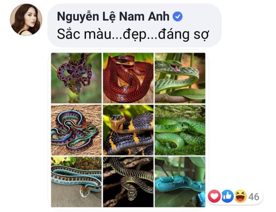 Chị gái Nam Em thả ảnh rắn độc vào Facebook Bảo Trân-3