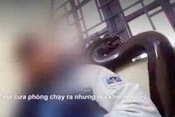 Phó giám đốc Sở GD&ĐT Hà Nội nói về nghi vấn nữ sinh bị ép bán trinh
