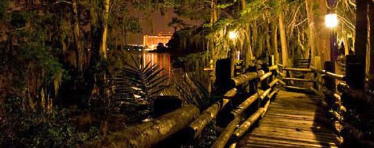 Bí ẩn phía sau công viên Disney duy nhất bị đóng cửa vĩnh viễn-3
