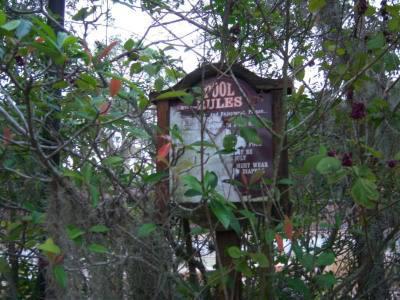 Bí ẩn phía sau công viên Disney duy nhất bị đóng cửa vĩnh viễn-6