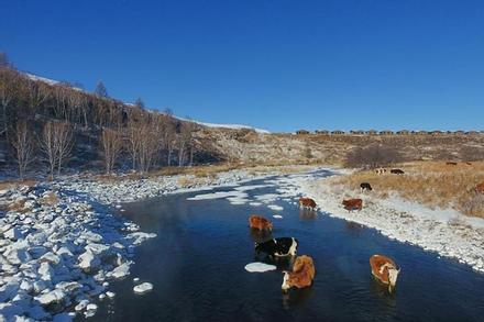 Dòng sông không bao giờ đóng băng dù -30 độ C