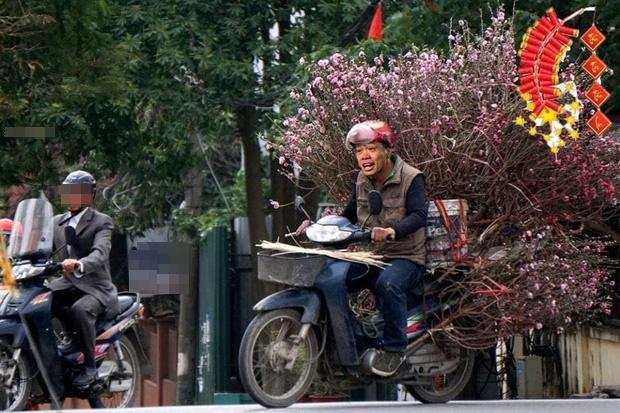 Cười sặc ảnh chế Quang Hải về quê bán đào kiếm bánh chưng có thịt, thầy Park tay xách nách mang sắm tết-3
